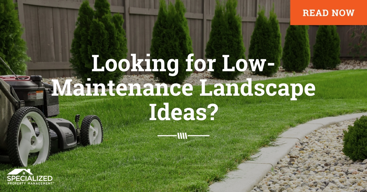 7 Looking for Low-Maintenance Landscape Ideas -Dallas Real ...